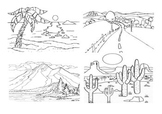 Compare types of landscapes