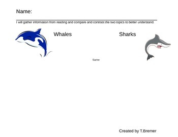 compare and contrast whales and sharks