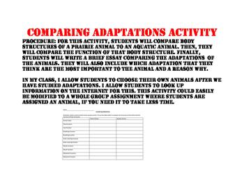 Comparing Adapatations