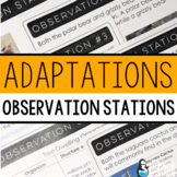 Comparing Adaptations Observation Stations