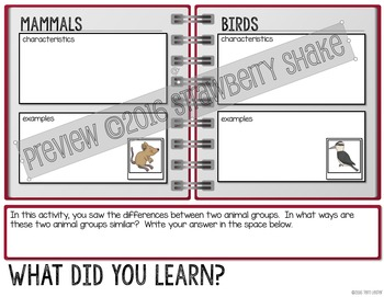 COMPARING Mammals and Birds: Elementary Interactive Notebook Activity