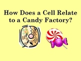 Comparing Cell Organelles to Candy Factory Analogy Hands-on Activity PowerPoint