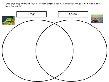 Comparing & Contrasting Frogs and Toads