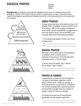 Comparing Ecological Pyramids by Science Lessons That Rock | TpT