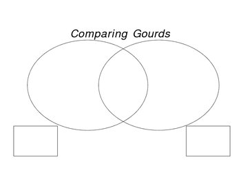 Comparing Gourds worksheet
