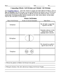 Comparing Mitotic Cell Division and Meiotic Cell Division Worksheet
