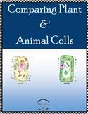 Comparing Plant & Animal Cells
