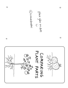 Comparing Plants Fold (K-1) by Science Doodles