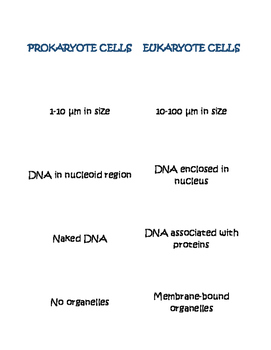 Comparing Prokaryote and Eukaryote Cells Card Sort No Lines