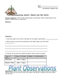 Comparing Radish and Pea Plants