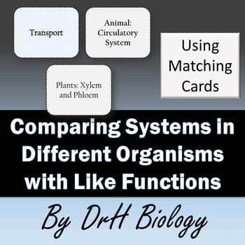 Comparing Systems in Different Organisms that have Like Functions