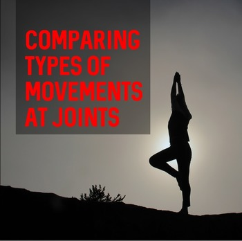 Comparing Types of Movements at Joints- Worksheet and Answer Key