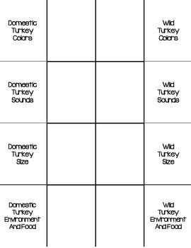 Comparing Wild Turkey and Domestic Turkey