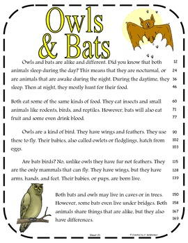 Compare And Contrast Owls Amp Bats Second Edition By