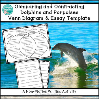 Comparing and Contrasting Dolphins and Porpoises