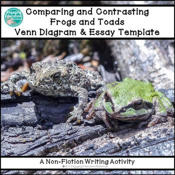 Comparing And Contrasting Frogs And Toads Graphic Organizer