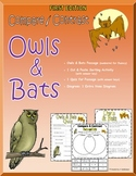 Compare and Contrast: Owls & Bats (FIRST EDITION)