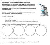 Comparing the Ameba to the Paramecium Key