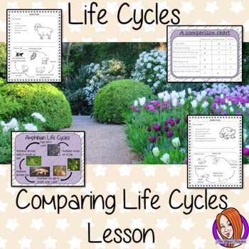 Comparisons Life Cycles -  Complete Science Lesson