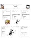 Competition Worksheet (HW)