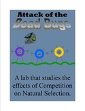 Competition and the Bead Bugs