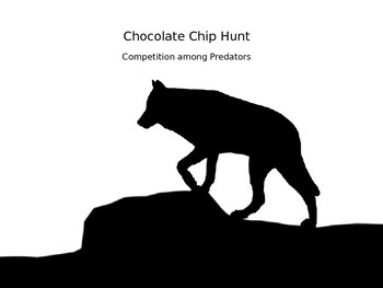 Competition between Animals: Chocolate Chip Hunt