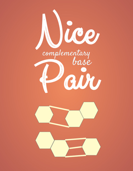 Complementary Pair Poster