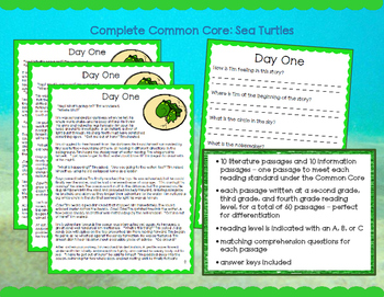 Sea Turtles: Passages & Questions to Meet ALL Third Grade Reading Standards