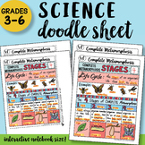Complete Metamorphosis Doodle Sheet - So Easy to Use! PPT included