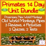 Primate Unit Bundle: 14 Day NO PREP! Lessons, Activities, Assessments