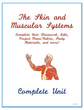 Complete Skin and Muscular System Unit - Middle School Science