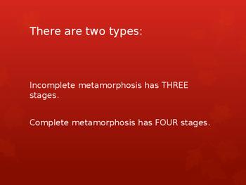 Complete and Incomplete Metamorphosis