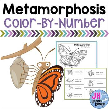 Complete and Incomplete Metamorphosis - Color-By-Number