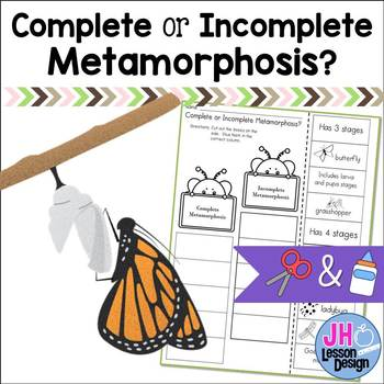 Complete and Incomplete Metamorphosis: Cut and Paste Sorting Activity