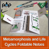 Complete and Incomplete Metamorphosis Foldable: Life Cycle