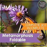 Complete and Incomplete Metamorphosis Science Notebook Foldable