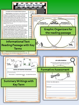 Complete and Incomplete Metamorphosis- Science and Literacy Lesson (TEKS)