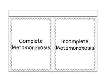 Complete and Incomplete Metamorphosis Sort