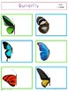 Complete the Butterfly Photos for Visual Perception