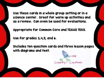 Metamorphosis: Complete vs Incomplete:..Great for NGSS and TEXAS TEKS