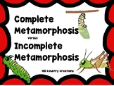 Metamorphosis: Complete vs Incomplete:..Great for NGSS and