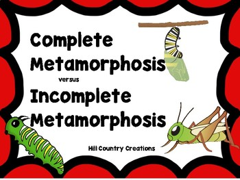 Complete versus Incomplete Metamorphosis..Great for NGSS a