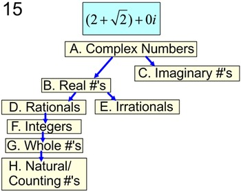 Complex Numbers, Classify & Define 2 Student References & 3 Assignments on PDF