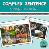 Complex Sentence Comprehension: includes PDF and Boom vers