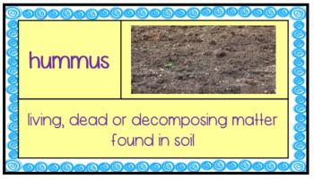 Components of Soil Unit