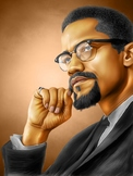 Composition Course on Malcolm X - Chapters 5-6