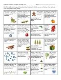 Compound Chemistry Christmas Calendar Scavenger Hunt