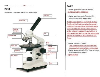Compound Microscope worksheet