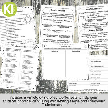 Simple and Compound Sentence Packet - No prep - FREEBIE!
