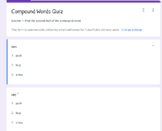 Compound Words Google Forms *editable*